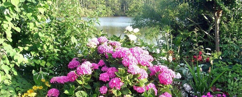 jardin-mimizan-1200x480